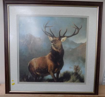 Print of a stag