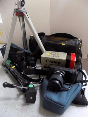 Box of camera equipment including Canon T50 + tripods