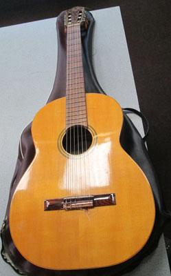 Di-Giorgio guitar with case