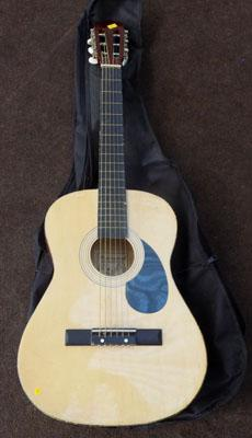 Buiswood accoustic guitar with case