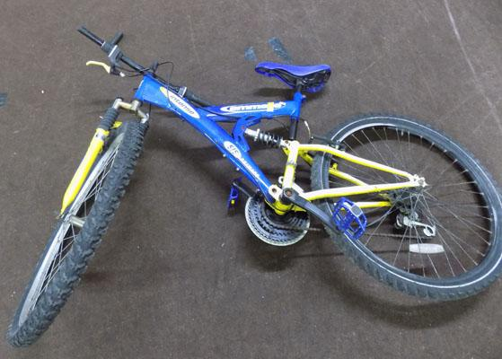 Emmelle intense mountain bike