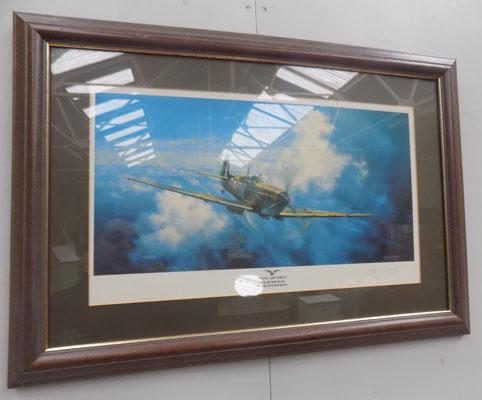 Royal Air Force out of the blue signed print