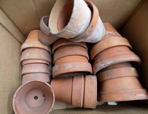 Box of terracotta planters