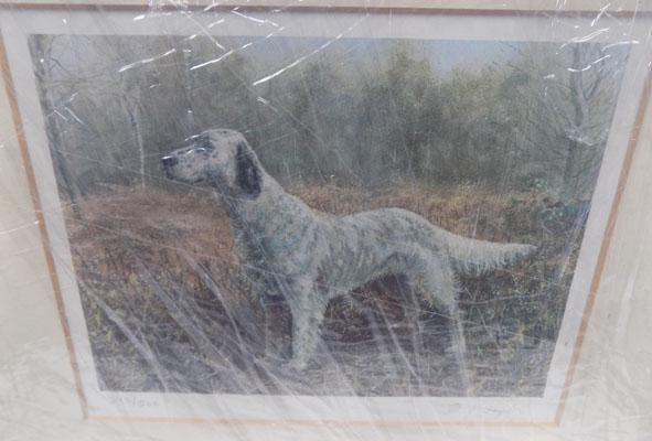 Limited edition print of a dog, 393/500  M.G. Taylor