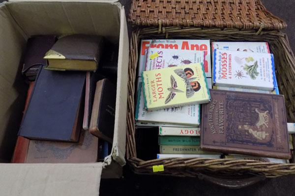 Collection of old books & Bibles