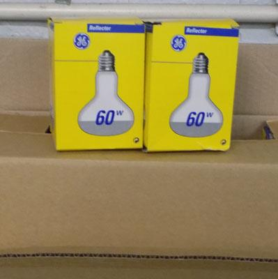 Two boxes of light bulbs