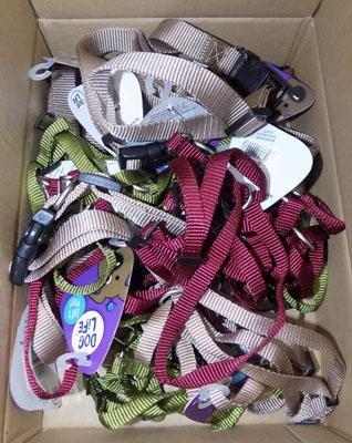 Box of new dog leads and collars