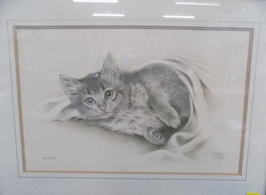 Kitten picture by Sue Willis signed 249/750