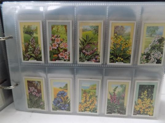 Album of cigarette cards