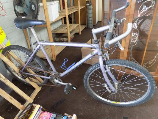 Claude Butler girls bike