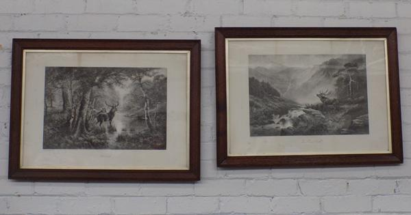 Pair of vintage framed stag prints
