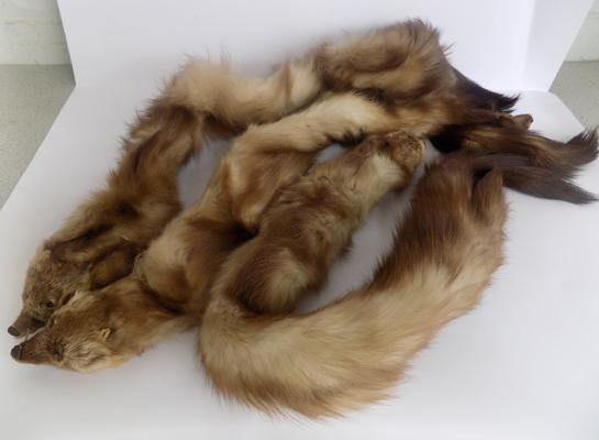 Three fur stoles