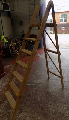 Large dipped stepladder