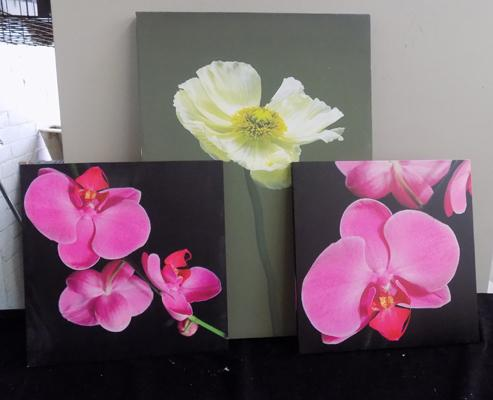 Three canvas flower prints