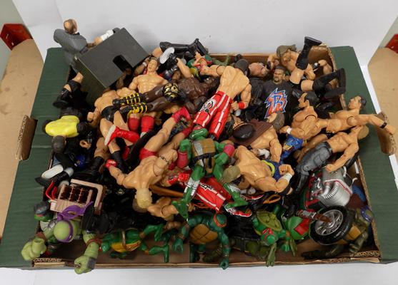 Mixed lot WWF wrestler figures & Teenage Mutant Ninja turtles