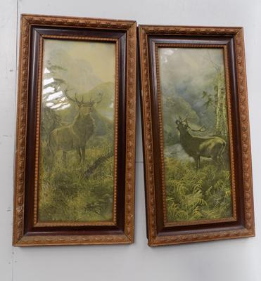 2 framed Stag pictures