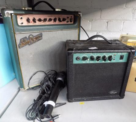2 Amps & microphone
