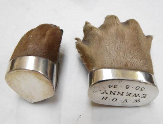 2x Taxidermy Otter's paws both silver mounted