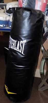 Everlast punch bag & gloves