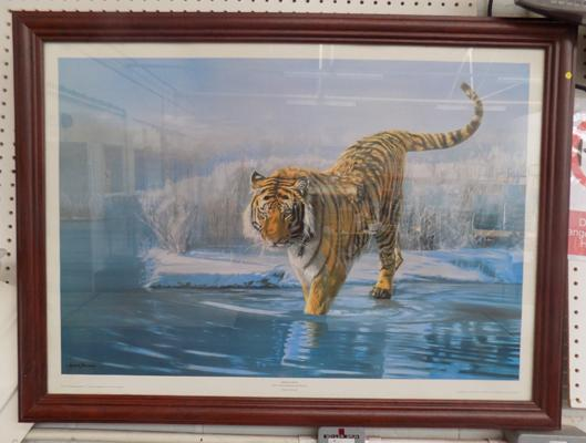 "Tiger picture 37"" x 27 1/2"""