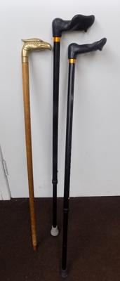 3 walking sticks , 1 with brass handle