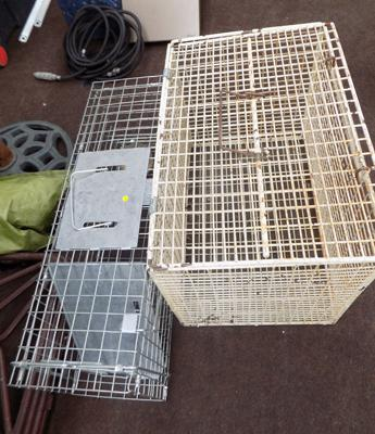 Two rodent cages