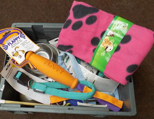 Box of dog toys, leads, harnesses etc