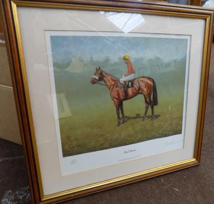 Framed print of Red Rum by Peter Drighan 340/500