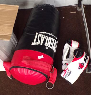 Everlast boxing bag and gloves