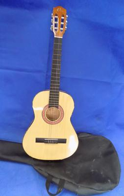 Acoustic guitar in padded case
