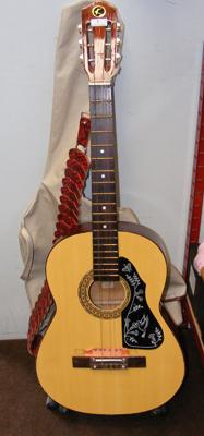 Acoustic guitar with strap & case