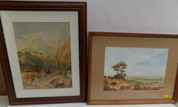 "2 framed watercolours - signed by artist - P.Robinson - 16"" x 12"""
