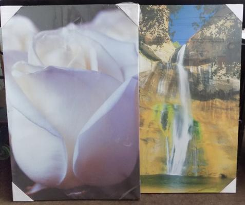 Two large sealed prints on canvases - 24 inches x 35.5 inches