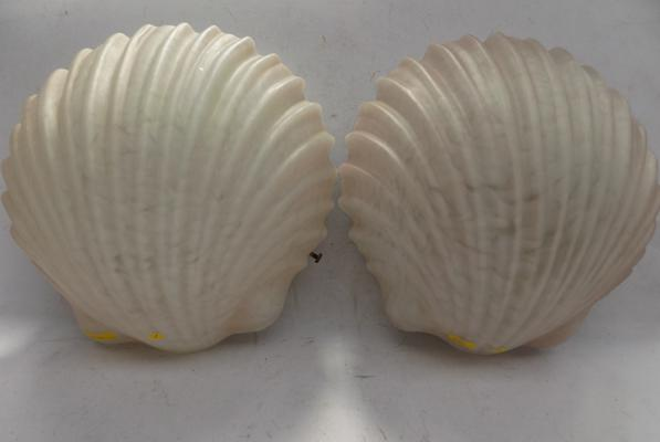 Pair of frosted glass shell wall lights