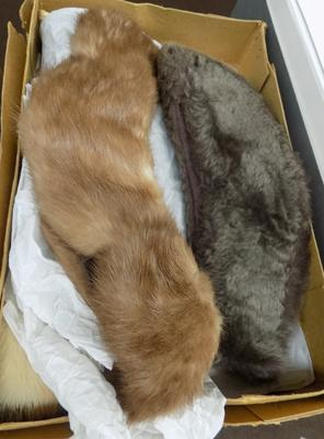 Selection of mixed furs