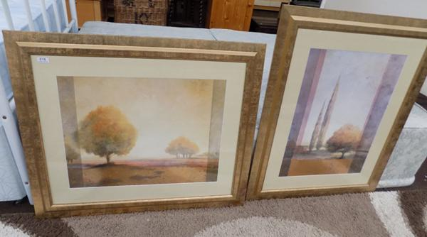 2 modern framed scenic prints