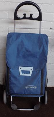 Isotherm shopping trolley bag