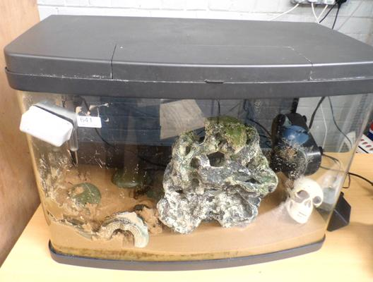 Bow front fish tank with day/ night light, filter, heater and extras - no leaks