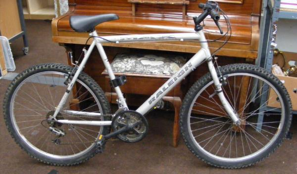 Raleigh gent's mountain bike