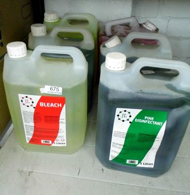 6 x 5 litre bottles of cleaning products, incl.bleach & disinfectant