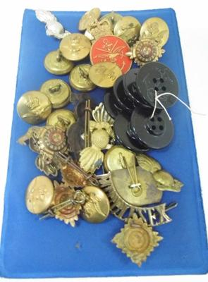 Collection of cap badges/buttons/officers PiPs etc...