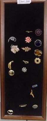 Selection of brooches on display board (17 in total)