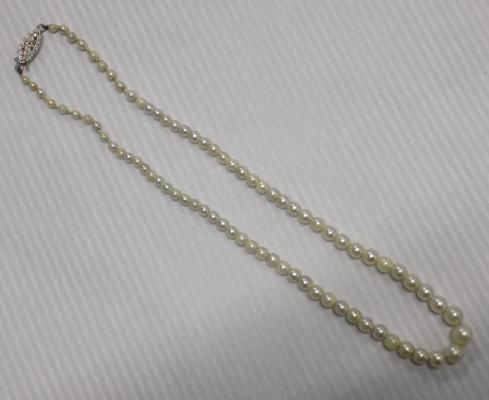 Real pearl necklace with silver clasp