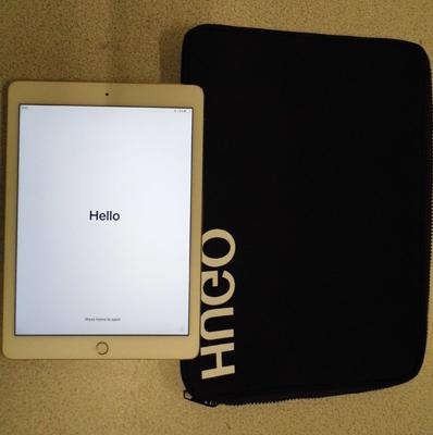 Ipad Air 2 W/O in rose gold - no lead, with case