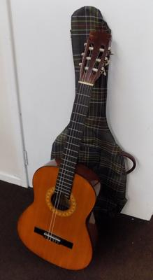 Encore acoustic guitar with bag