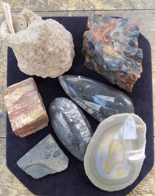 Collection of rocks, incl. agate geode & fossils