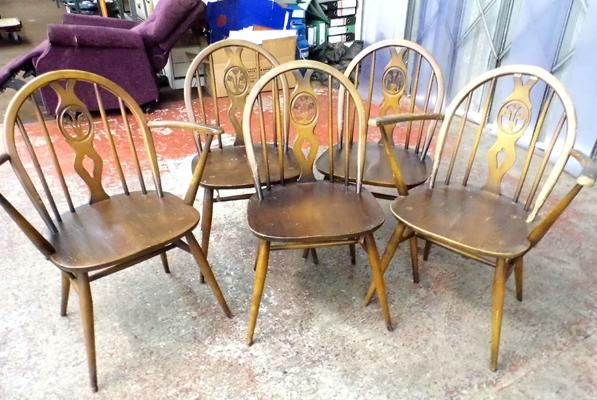 3x Chairs plus 2x carvers Ercol (5 in total)