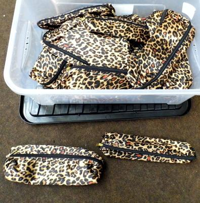 Box of hair straightener/curling tongs bags