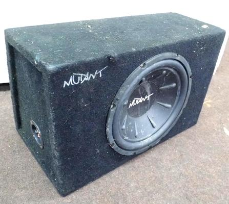 Mutant speaker/sub woofer