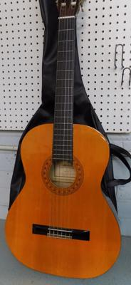 Hohner acoustic guitar with carry case
